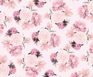 florals, pattern, and pink image