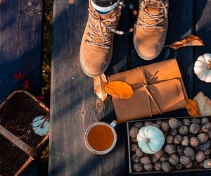 autumn, boots, and cider image
