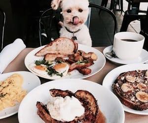 dog, food, and animal image