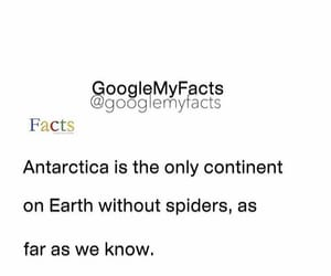 antarctica, hate, and facts image