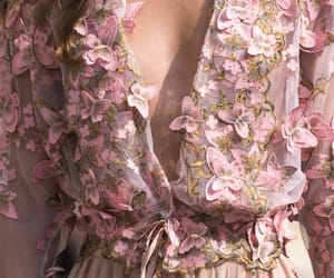 butterflies, details, and fashion image