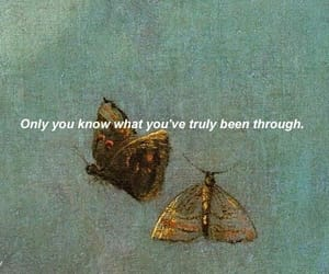aesthetic, butterfly, and grunge image