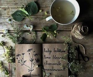 tea, flowers, and herbs image