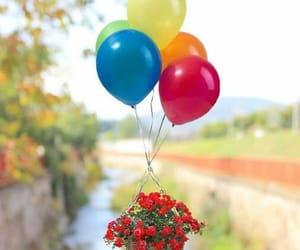 balloon, rose, and blue image