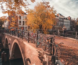 adventure, architecture, and autumn image