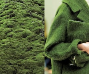 green, coat, and fashion image