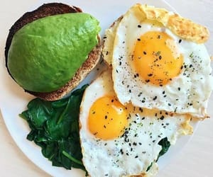 avocado, breakfast, and diet image