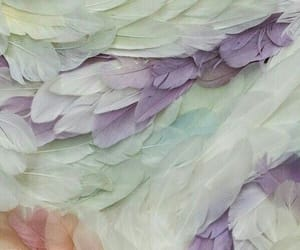 feather, pastel, and texture image