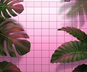 wallpaper, pink, and leaves image