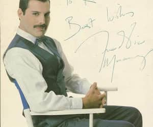 album, Freddie, and firm image
