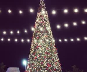 christmas, christmas tree, and ornaments image