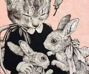 cats, conejos, and mariposa image