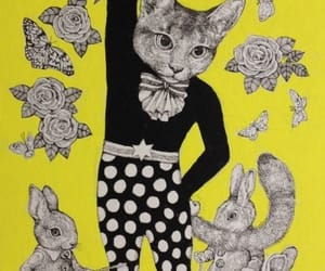 cats, conejos, and pesas image