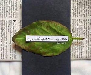 كلمات عربي, اقتباسات عربية, and حب عشق رومانسيات image