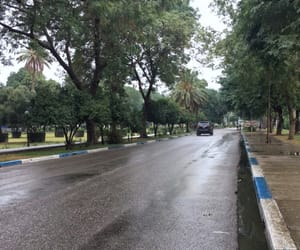baghdad, iraq, and rain image