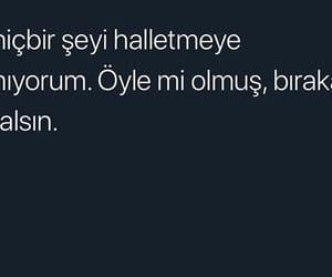 ask, replik, and alıntı image