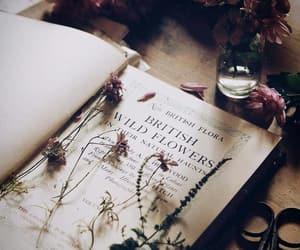 biology, books, and botany image