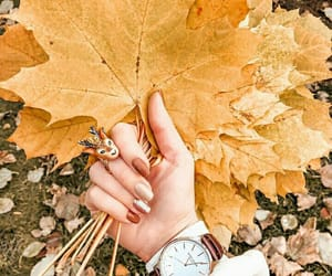 autumn, colors, and happy image