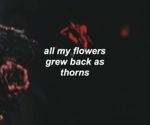 quotes, flowers, and thorns image