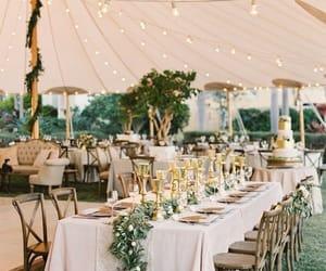 wedding and wedding ideas image