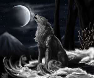 wolf, fantasy, and moon image