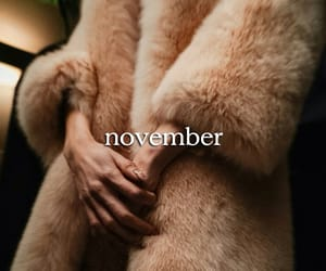 classy, fall, and fur image