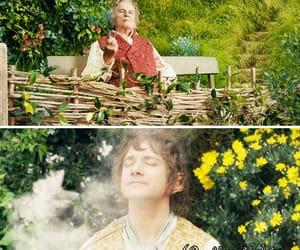 the hobbit and bilbo baggins image