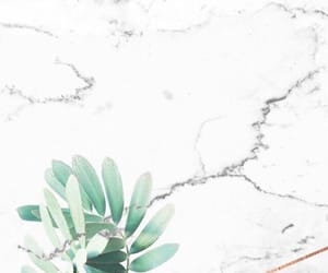 background, natural, and pattern image