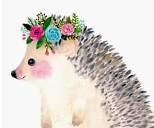 florals, hedgehog, and hipster image
