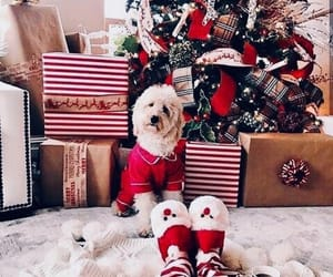 aesthetic, christmas tree, and love image