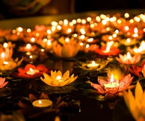 flowers, candle, and light image
