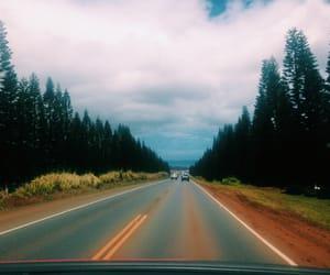 fall, goals, and hawaii image