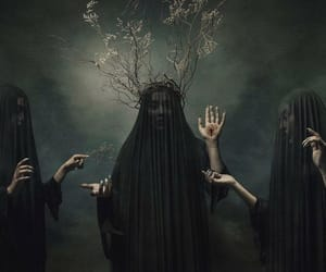 black, branches, and coven image