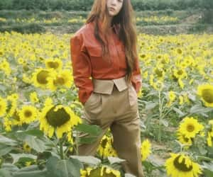 field, marie claire, and soojung image