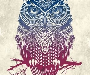 art, beautiful, and owl image