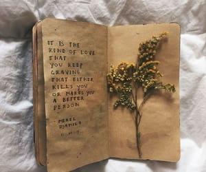 creative, herbs, and ideas image