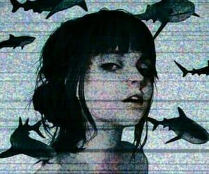 girl, shark, and art image