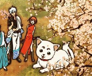 flower, kagura, and anime boy image