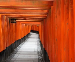 japan, japon, and travel image