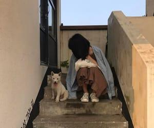girl, aesthetic, and dog image