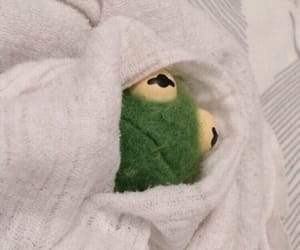 kermit, meme, and mood image