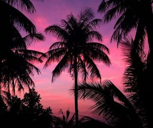 color, pink, and sunset image