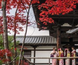autumn, girls, and japan image