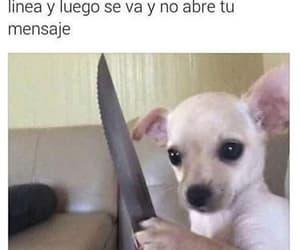 espanol, humor, and meme image