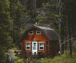 house, nature, and love image