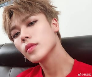 nine percent, idol producer, and lin yanjun image
