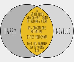 charts, graphs, and harry potter image