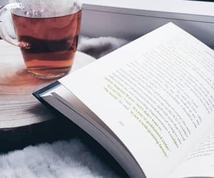 book, cozy, and day image