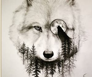 wolf, drawing, and moon image