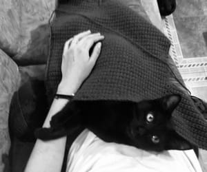 black, knitting, and black and white image